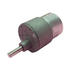 Side Shaft 12V / 300 RPM Geared Motor